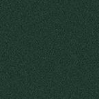 RAL 6012, стандартні кольори